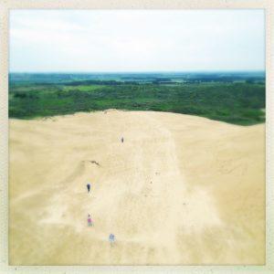 Blick von einem ehemaligen Leuchtturm hinab auf eine Düne, deren Sand sich ins Grün des Hintergrunds frisst