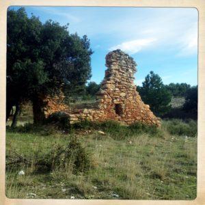 kleine Ruine einer Art Wingertshütte. Ockerfarbene Steine. Daneben Olivenbäume.