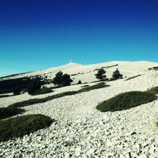 Eine Geröllhalde ist durchsetzt von grünen Flecken unter tiefblauem Himmel. In der Ferne ein Berggipfel mit Turm.