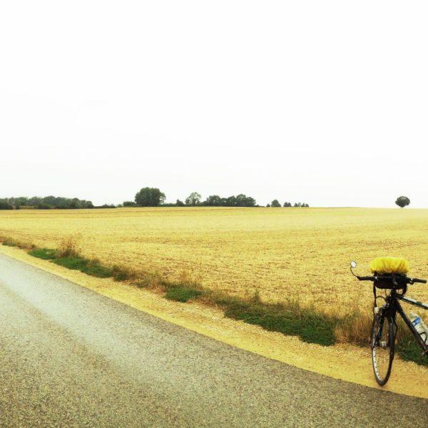 Sehr flache Gegend, abgeerntetes Getreidefeld hinter einem schräg ins Bild laufenden Teerweg. Im rechten Bildteil sieht man ein Fahrrad