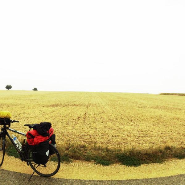 Sehr flache Gegend, abgeerntetes Getreidefeld hinter einem schräg ins Bild laufenden Teerweg. Im linken Bildteil sieht man ein Fahrrad