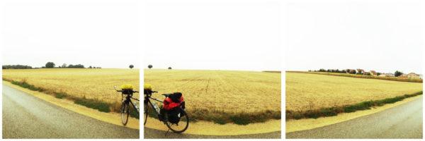 Vor einem abgeernteten Getreidefeld steht ein bepacktes Reiserad. Die Gegend ist flach bis zum Horizont.
