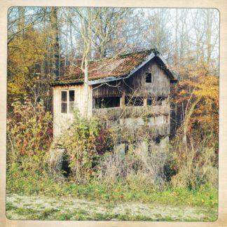 Eine Art Gartenhaus aus Holz mit Satteldach in einem verwilderten Grundstück.