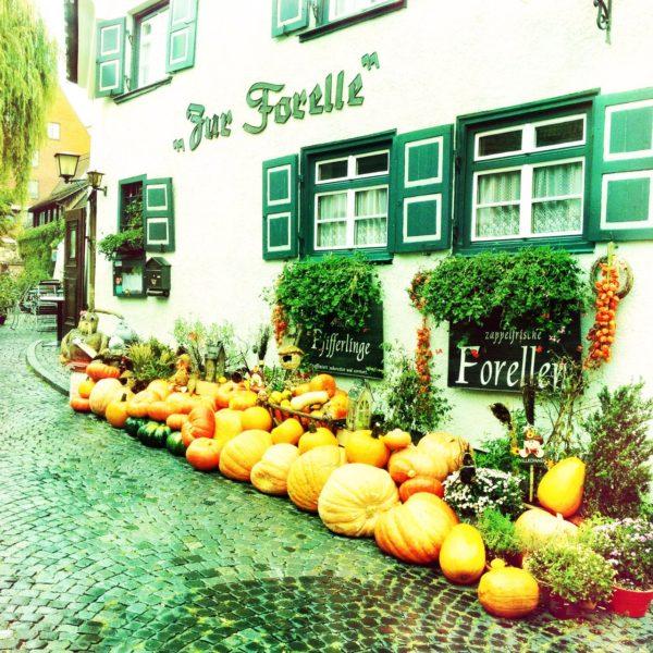 Vor einem Gasthof mit der Aufschrift 'Zur Forelle' liegen viele große Kürbisse auf Kopftseinpflaster.