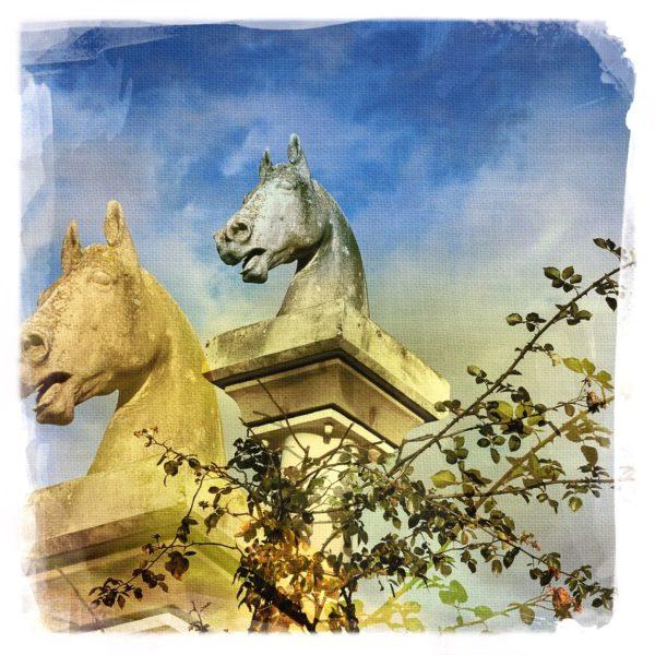 Eine Pferdebüste auf einem Sockel, umrankt von jungkeimenden Rosen. Die Büste ist dupliziert und taucht in veränderter, gelblicher Farbe auch im Hintergrund wieder auf.