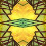 Rotbraune Zacken kreuzen sich rings um das gelbe Bild. Aus der Mitte starrt einegrünliche Rautenkontur, umgeben von einer größeren grünlichen Rauutenkontur und noch einer größeren Rautenkontur.