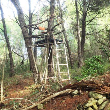 Ein improvisierter Jagdhochsitz, der mit Draht an einem Baum befestigt ist. Auf der Plattform steht ein Schulraumstuhl.