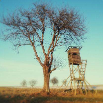 Ein Hochsitz aus eigenwilliger Konstruktion rechts neben einem nicht belaubten Obstbaum. Das Bild hat eine Unschärfe-Vignette.