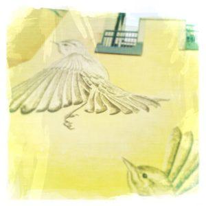 Aufnahme aus der Froschperspektive einer Hauswand, auf der flatternde Vögelgraffities untder einem Fenster gen Himmel zu fliegen scheinen. Gelblich verfärbtes Bild.
