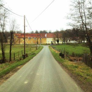 Blick eine schmale Straße entlang , die auf einen französischen Hof zuläuft. Die aneinander gebauten Gebäude zeigen eine klare Linie der Trennung durch unterschiedliche Farben, gelb und weiß. Ringsum Wald und Weiden.
