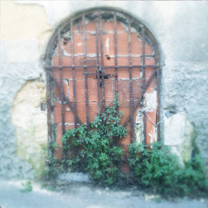 Vo einer zugemauerten Tür mit Rundbogen schließt ein rostiges Eisengitter, vor dem Pflanzen ranken.