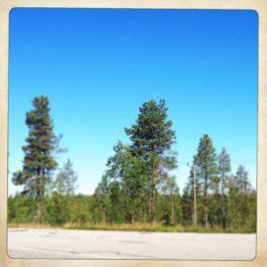 Linker Teil der Lappland-Panoramas