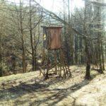 Jagdhochsitz etwas schräg von oben betrachtet im lichten Frühlingswald. Die Sonne wirft Schatten aus etwa Richtung zwei Uhr.