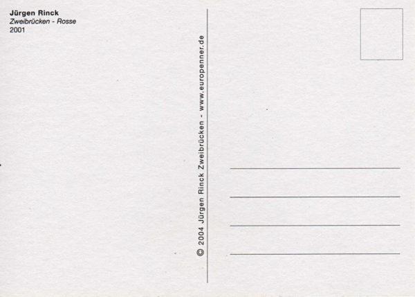 Leere Rückseite einer Postkarte mit Adressfeld, Titel des Motivs und zentraler Trennlinie.