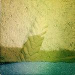 Von oben blickt man auf einen Haufen Sand, der auf Teer zu liegen kommt, klare Horizontlinie zwischen Teer und dem gelb des Sandes im unteren Bilddrittel. Mittig führt die Spur eines Traktorhinterreifens wie ein französischer Akzent in den Sand. Dort wo der Sand den Teer berührt ist er nass und somit etwas dunkler.