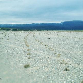 Blick auf eine weite Geröllebene vor fernen blauen Bergen. Eine Fahrzeugspur hat Mulden hinterlassen, in denen kleine Büsche wachsen.