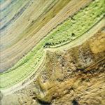 Blick auf eine gelblich-grünliche Pfütze, in der sich Ringe bilden und eine diagonale Struktur zeigen.