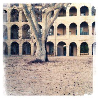 Blick auf einen Hof. Der untere Stammteil einer Platane vor einem Gebäude mit vielen Rundbögen.