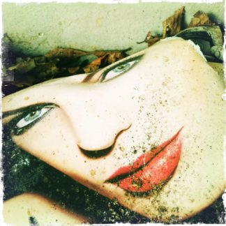 Ein Frauengesicht aus einer Illustrierte mit Schmutz und Erde, der obere Teil ab dem Haaransatz ist zerrissen. Knallrote Lippen vor fast weißem Teint.