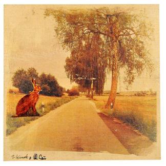 Am Rand einer leeren, schmalen Obstallee sitzt ein übergroßer Hase im Profil