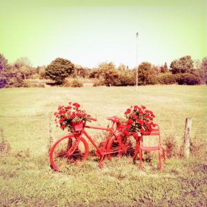 Das blass-rötlich verfremdete, quadratische Bild zeigt ein altes, rot bemaltes Fahrrad neben einem ebenso rot bemalten Stuhl vor einer wie verbrannt wirkenden Felderlandschaft. Geranien, natürlich rot, zieren Lenker und Gepäckträger