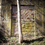 Im schrägen Schlagschatten von links liegt eine Wand, in der eine ehemalige Tür zugemauert ist. Mitten vor der Tür wächst ein junger Baumstam.