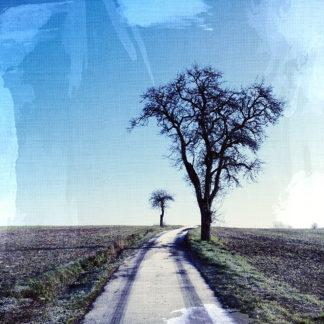Blick einen leicht gekrümmten, schmaslen Teerweg entlang, an dessen rechter Seite ein kahler Birnbaum steht, links im Hintergrund ein krummer Apfelbaum. Blauer Himmel, Leinwand-Struktur, der Weg trägt Raureif und eine Fahrzeugspur.