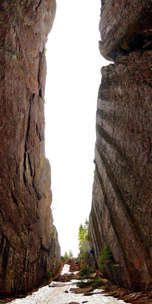 Senkrechte Weitwinkelaufnahme einer etwa 20 Meter breiten Felsenschlucht. Vom Bodend er Schlucht reicht der Blick entlang senkrechter, brauner Felsen in den weißen Himmel. Neben Geröll keimen krüppelige Nadelbäume.