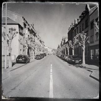 Retro-Schwarz-weiß-Foto einer städtischen, geraden Straße. Zwischen einer Flucht aneinandergebauter Häuser mit Giebeln und gauben flanieren zu Krüppeln geschnittene Platanen neben Autoparkplätzen. Die Mittellinie der leeren Straße ist durchgezogen.