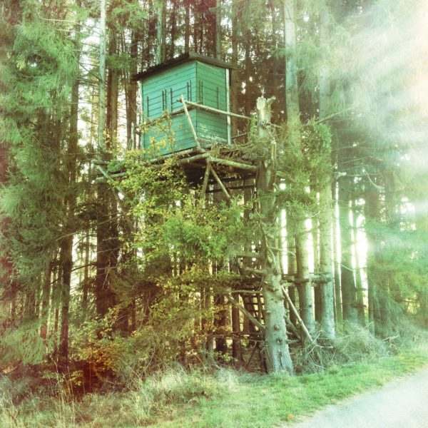 Quadratisches Bild mit Retroeffekten. Das grün-bläulich verfärbte Bild eines Hochsitzes am Waldrand. Eine verblassende Vignette lässt die Farbe zu den Ecken hin ausklingen.