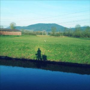 Über einen Kanal hinweg schaut man in dem bläulich-grünen Bild auf den Schatten eines Radlers an der Uferböschung. Im Hintergrund mittelgebirgsartige Berge.