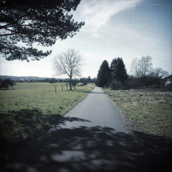 Blassblaugraues Retrobild eines Radwegs, der schnurgerade auf eine Gruppe dunkler Nadelbäume hinzuführt.
