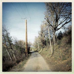 Auf einem nach links abschüssigen Gelände führt ein Weg geradeaus Richtung Bildmittelpunkt. Links des Wegs ein hölzerner Strommast, rechts Bäume