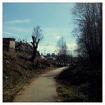 Ein Bahntrassenradweg im Einschnitt in Ortsnähe. Gärten und ein Haus links, sowie frisch gestutzte Bäume im Gegenlicht.