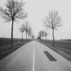 Schwarz-weiß Aufnahme einer Straße durch flaches, winterliches Agrarland. Ein markanter schwarzer Flicken ziert das Grau. Die junge Allee ist kahl und verschwimmt zum Rand hin.