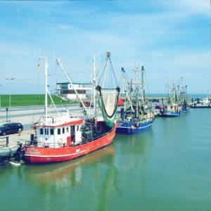 längs zur diagonal von links unten nach rechts oben verlaufenden Kaimauer liegen Fischerboote vor Anker. Der bläulich-gelbe Farbstich unterstreicht die Küstenatmaosphäre.