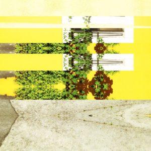 Ein digital in Streifen zerlegtes Bild einer Hauswand mit Strauchbewuchs. Gelb und Grün dominieren neben weißen Rechtecken und grauen, kaleidoskopartigen Verwerfungen.
