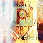 Schrill verfärbtes verrostetes Parkplatzschild, das in die Rinde einer Platane eingewachsen ist. Farbton hellblau bis rötlich und gelb.