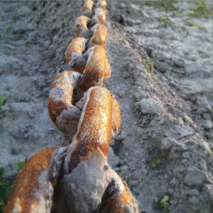 Armdicke, rostige, gespannte Eisenkette über sandigem Untergrund spannt sich zu einem nicht sichtbaren Etwas von einem nichtsichtbaren Etwas kommend.