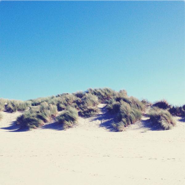 Eine kleine, fast weiße Sanddüne mit spärlichem Strandbewuchs unter blauem Himmel.