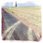 Von einem Teerweg zweigt nach rechts eine zweispurige Schmutzspur in ein abgeerntetes Feld. Ansatzweise der Fuß eines Windrads im Hintergrund.