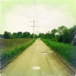 Gerader Weg mit Pfützen durch grünen Bewuchs. Im weißen Himmel am Horizont schemenhaft ein Strommast.