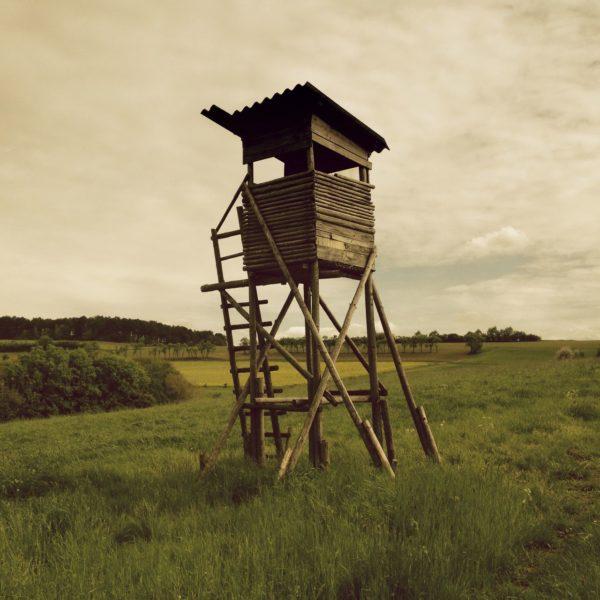 Grünlich bräunliches Bild eines freistehenden Hochsitzes auf weitem Feld.