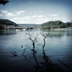 Schatten von Uferbewuchs ragt in einen tiefblauen Fluss-Stausee. Im Hintergrund eine Brücke.
