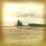 Beiges Bild einer Felderlandschaft auf Anhöhe