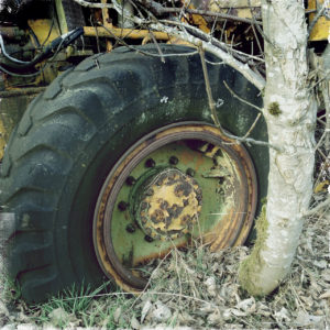 Der alte, abgefahrene Reifen einer großen Baumaschine steckt samt grünlicher, halb verrosteter Felge in der Erde fest und ist umwuchert von Gestrüpp, sowie einem gut armdicken Baum, der sich offenbar unter dem Reifen selbst gepflanzt hat und bananenkrumm darunter herauswächst.