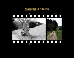 Am rechten Rand eines Feldwegs steht eine uralte Weide, deren Krone schon oft geköpft wurde und die immer wieder ausschlägt. Zwei Bilder auf Fimstreifen mit schwarzem Hintergrund montiert. Links die schwarz-weiß-Version, rechts bunt zehn Jahre später aufgenommen. Titel Zweibrücken-Andorra 2000-2010 km 522.