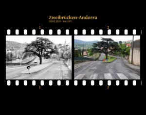 Parallel zu einer Bahnlinie verlaufende innerstädtische Straße, die sich an einer Verkehrsinsel teilt. Auf der Verkehrsinsel steht ein markanter südländischer Nadelbaum mit dreieckiger Aststsruktur, die ein bisschen Distelblättern ähnelt, nur in sehr groß. Zwei Bilder auf Fimstreifen mit schwarzem Hintergrund montiert. Links die schwarz-weiß-Version, rechts bunt zehn Jahre später aufgenommen. Titel Zweibrücken-Andorra 2000-2010 km 1071.