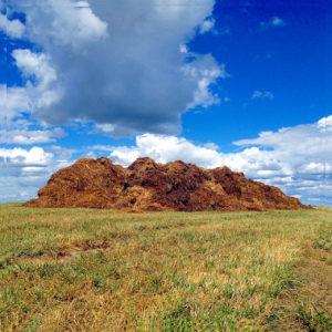 Unter wuchtigen quellwolken an sattblauem Himmel thront ein bildbreiter rotbrauner Misthafen auf kurz gemähter Weise.