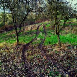 Wie die Form eines längs liegenden Kussmunds zieht sich eine Reifenspur unter kahlen Obstbäumen durch eine übersättigt grüne, teils mit laub bedeckte Wiese.